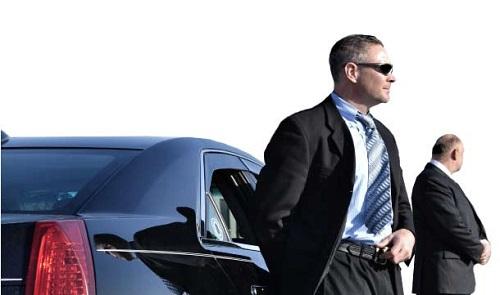 Wolf Securities & Investigations LLC - Fort Valley, GA